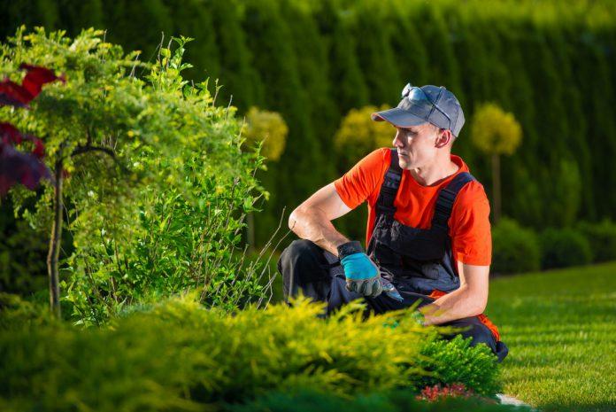 tuininrichting door tuinman