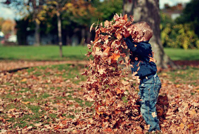 jongetje speelt met blaadjes in tuin